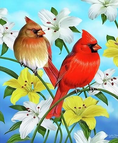 Картина по номерам 20x30 Пара кардиналов на цветущей лилии